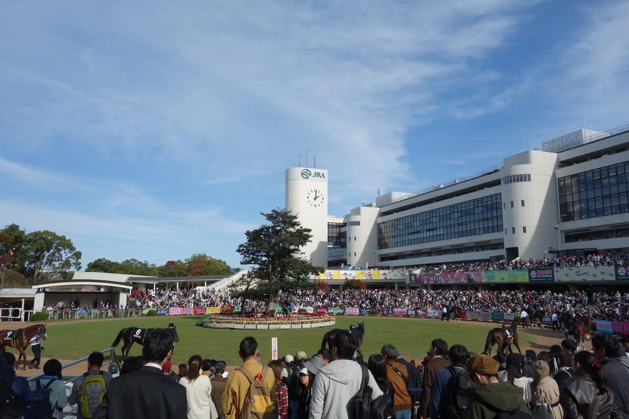 改修 京都 競馬 場